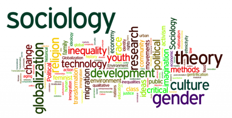 MA Sociology